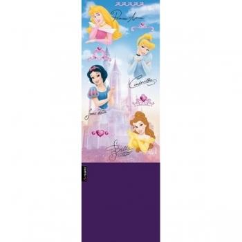 Princesas Aurora/Reigh